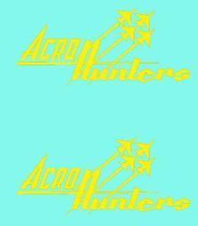 Acro Hunters nose emblems 1/32